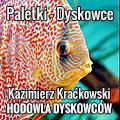 hodowle_paletki_dyskowce_kazimierz_kackowski