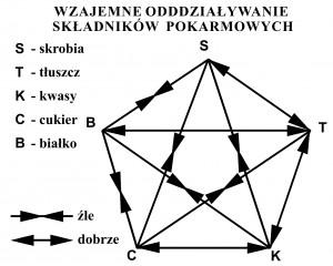 02. Z02. Wzajemne oddziaływanie składnikówpokarmowych